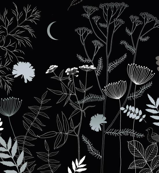 Weiß-silberne Pflanzen und der Mond
