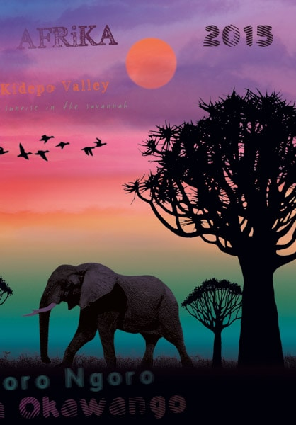 Ein Elefant in Okawango