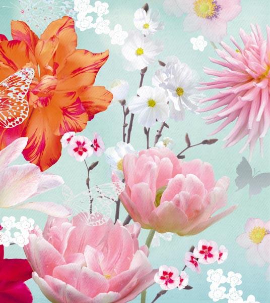 Rosa, weiße und orangene Blumen