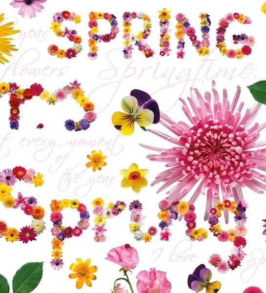Spring-Schriftzug aus Blumen